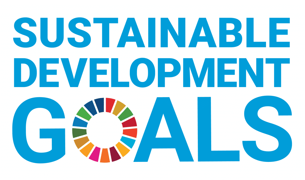 sustainable development goals partnership sophia high school