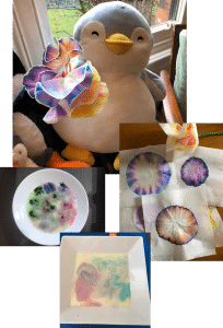 Year 1 Science Week moving colours
